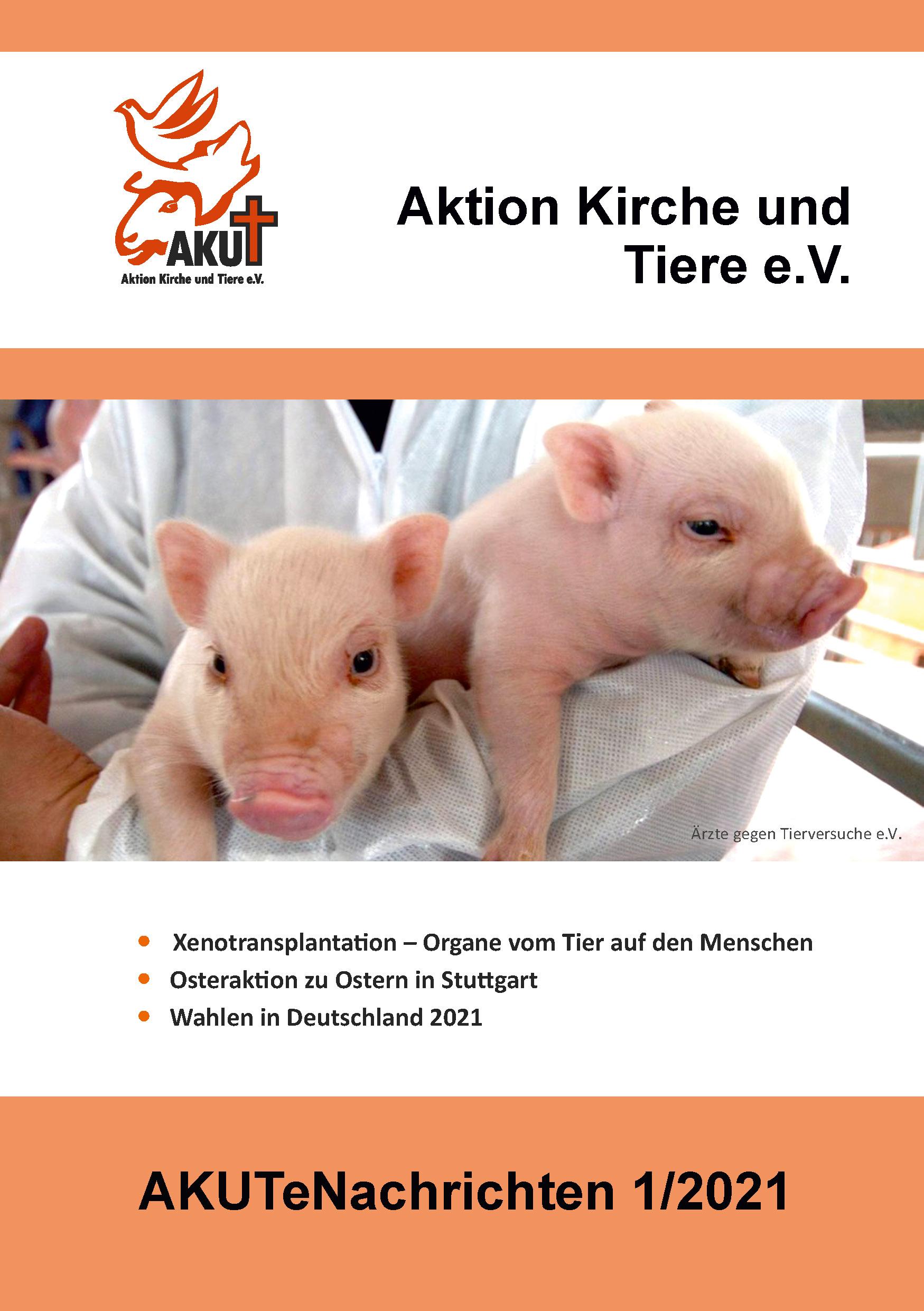 Bild Titelseite AKUTeNachrichten 1/2021