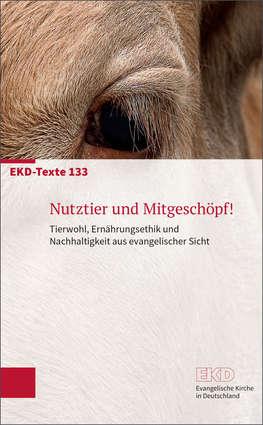 EKD-Papier 133 Titelbild